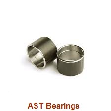 AST ASTT90 7050 plain bearings