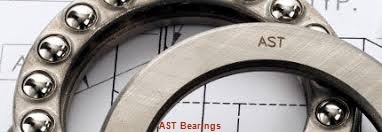 AST AST11 9560 plain bearings
