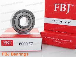 FBJ NK42/20 needle roller bearings