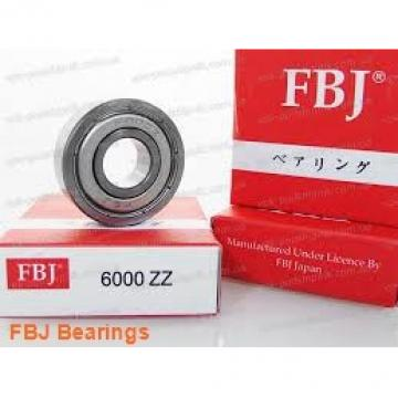 55 mm x 100 mm x 21 mm  FBJ NF211 cylindrical roller bearings