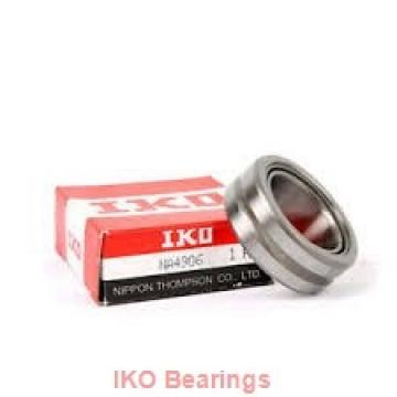25 mm x 42 mm x 20,5 mm  IKO NAXI 2530 complex bearings