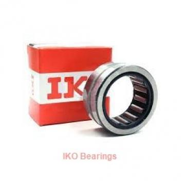 25 mm x 42 mm x 17 mm  IKO NAG 4905UU cylindrical roller bearings