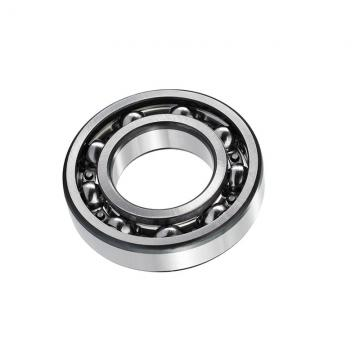Japan NACHI Bearing 6001-RS/2RS/Zz Deep Groove Ball Bearing 6001